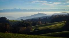 Clear View (karlbauernhansl) Tags: mist alps green fog austria sterreich nebel grn obersterreich rollinghills hgel moutnains pstlingberg upperaustria mhlviertel alpenvorland