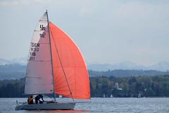 _DSF3930 (Frank Reger) Tags: regatta u20 dsc segeln segelboot diessen