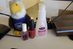 Curious juxtaposition. (wwward0) Tags: nyc office eagle desk box soho indoor cc stuffedanimal nailpolish nsa wwward0