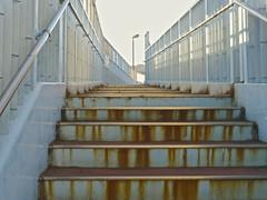 Footbridge_1180729 (strange_hair) Tags: street bridge sunset japan tokyo stair footbridge