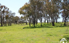Lot 5 158 Bradley Road, Borenore NSW