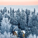 Winter wonderland by Alex and Nastya - Tampere, Finland. www.nearthelighthouse.com