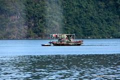 D72_7553 (Tom Ballard Photography) Tags: vietnam halongbay tourboats bayclub 20151118