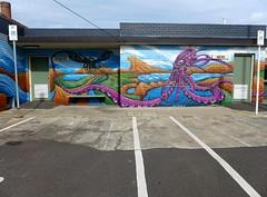 darren wescombe 2013 (75kombi) Tags: geelonggraffiti geelongstreetart darrenwescombe cityaerosolnetwork