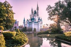 storybook castle (joe.diebold) Tags: world magic disney dreams waltdisneyworld storybook magickingdom cinderellascastle sunstar purplesky cinderellacastle newfantasyland