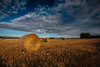 Straw Bales (Olof Virdhall) Tags: trees summer sky field clouds canon straw bales eos5 mkiii golddragon