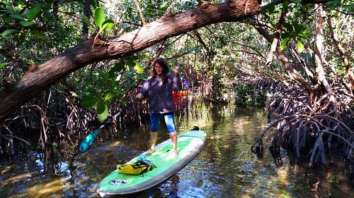 2_10_16 Kayak Paddleboard Tour Sarasota FL 10