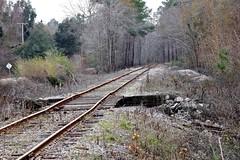 Bumpy Ride (Gabriel FW Koch) Tags: trip railroad forest train canon outside eos woods dof ride zoom bokeh outdoor traintracks telephoto rails bent curved wavy