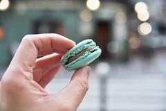 blue Ladure (*steveH) Tags: paris macaroon pastry macaron storebought steveh
