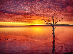 Cactus Ridge Redux (Kansas Poetry (Patrick)) Tags: sunset kansas clintonlake patrickemerson vividandstriking patricklovesnancy