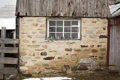 textures of Lanark County (Barbara A. White) Tags: ontario canada window stone barn woodlawn insulators ouellettes lanarkcounty