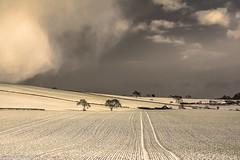Fast approaching. (AlbOst) Tags: winter snow clouds farmhouse skies tracks farmland dusting wintersun greyskies farmbuildings coth simplysuperb laquintaessenza