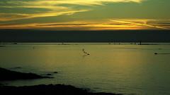 20150809-110_Flare_SOS At Sea (gary.hadden) Tags: sunset seascape landscape evening silhouettes saintmalo stmalo