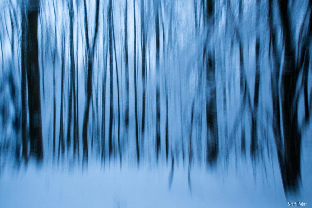The world 39 s best photos of malen and schnee flickr hive mind - Baum malen ...