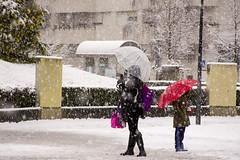 _APB2773 (2) (plazaberribaranain) Tags: nikon nieve baraain invierno agustin navarre elurra navarra nafarroa negua d7200 agustinpea nikond7200 plazaberri plazaberriinfo