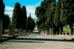 Itlica sevilla (serielimitada) Tags: espaa roma sevilla cultura itlica