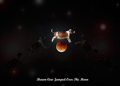 Brown Cow Jumped Over the Moon (shywag1978) Tags: dog moon composite contrast photography eclipse cow jump mix over surreal pitbull fullmoon adobe mansbestfriend browncow lunareclipse bullmastiff nurseryrhyme jumped rescuedog lensflares mothergoose heydiddlediddle pregnantdog pitbullmastiff adobephotogshop