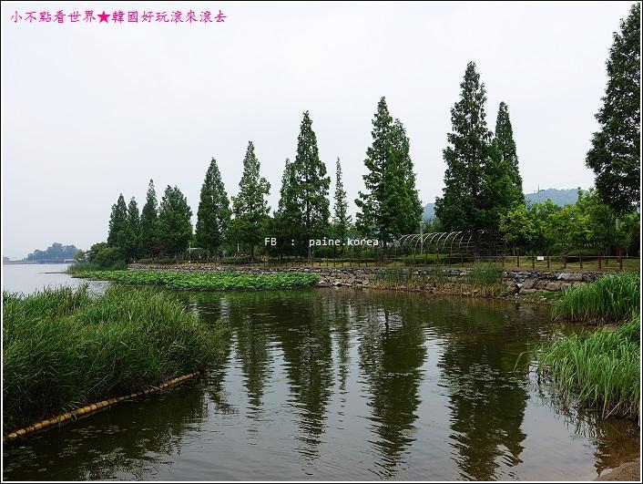 牙山神井湖水公園 (20).JPG