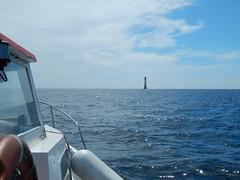 Plymouth-201506-54-ComingUpOn-EddystoneLighthouse (Tony J Gilbert) Tags: macro marine underwater plymouth diving scylla jameseaganlayne nikond300 handdeeps wwwdivingplymouthcom ceeking hilseapointrocks