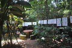 Exhibition at Rainforest, Madikeri (mansi-shah) Tags: rainforest farming coorg madikeri forestecology mansishah rainforestretreat jenniferpierce ceptsummerschool