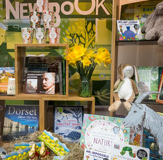 82/366 Easter Window - 366 Project 2 - 2016 (dorsetpeach) Tags: bunny green yellow easter book spring dorset daffodil shopwindow 365 cheerful windowdisplay dorchester waterstones englad 2016 366 aphotoadayforayear 366project second365project