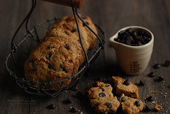 chocolate and walnut cookie (..: Petit Garden :..) Tags: cookie chocolate walnut homemade april sweets  2016