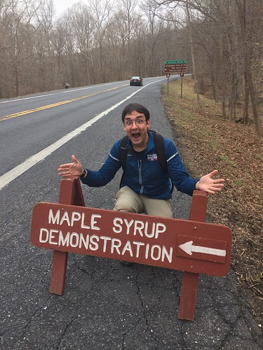 Excited for the Maple Festival