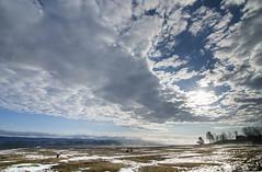 sunrise on wild horse paddock (Barbara A. White) Tags: horses snow clouds sunrise farmland vista cloudscape woodlawn wideanglelens dunrobin constancebay lensstar