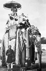 Lord and Lady Curzon, Viceroy and Vicereine of India, atop the elephant Lakshman Prasad on their way to inspect the Delhi Durbar, Delhi, 29 Dec, 1902 [1309x2023] #HistoryPorn #history #retro http://ift.tt/1Ugvy2J (Histolines) Tags: india elephant history lady way delhi lord dec retro timeline their 29 durbar prasad viceroy atop 1902 curzon inspect lakshman vinatage vicereine historyporn histolines 1309x2023 httpifttt1ugvy2j