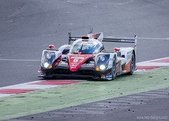 "WEC Silverstone 2016 (23) • <a style=""font-size:0.8em;"" href=""http://www.flickr.com/photos/139356786@N05/25934278744/"" target=""_blank"">View on Flickr</a>"