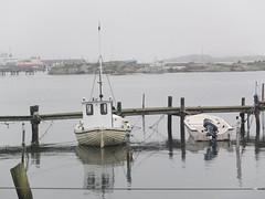 z-DSCF5136 (L.la) Tags: sea mer gteborg island europa europe fuji sweden eu sverige x10 lla sude styrs scandinavie fujix10 laurentlopez