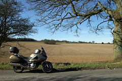 Honda Moment... (BIKEPILOT, Thx for + 5,000,000 views) Tags: uk blue england sky tree nature field honda gold spring motorbike motorcycle deauville nt700v
