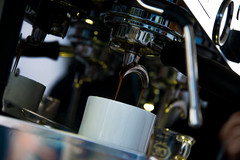 Current-E-Formula-E-Long-Beach-2016-HR-Marta-Rovatti-Studihrad-_MGR9487