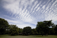 A SMALL AIRPORT, SOME PARKS AND CLOUDS - XXIX (Jussi Salmiakkinen (JUNJI SUDA)) Tags: park wood autumn sky cloud japan landscape tokyo cityscape     chofu    nogawa