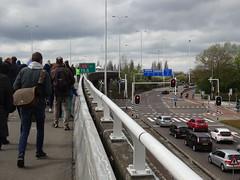 """Rotterdam: """"Kleinpolderpleinpark"""" (harry_nl) Tags: netherlands rotterdam highway nederland flyover snelweg a13 2016 kleinpolderplein"""