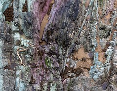 Looking Down . . . (Patrick Ahern Images) Tags: rocks cork lookingdown youghal 2016 52project