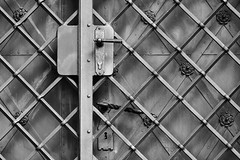 D71_6261BW (vkalivoda) Tags: blackandwhite monochrome doors security doorhandle dvee klika