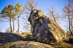 Bear Stone (Tiago Lourenco) Tags: estrela serra pedra urso rocha covilh