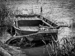 promenade en bords de Loire (gribsy) Tags: noiretblanc loire barque fleuve fz200