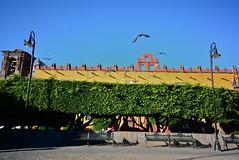 "San Miguel de Allende, México (aljuarez) Tags: plaza miguel méxico square de la san downtown place platz mexique guanajuato soledad altstadt centreville mexiko allende ""centro bajío histórico"""