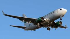 D-AGEU (equief) Tags: las erfurt gmi erf boeing flughafen germania 737 palmas lpa 737700 edde gclp 73775b erfurtweimar flughafenerfurtweimar st3663 gmi3663