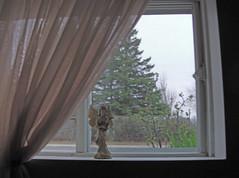 ** Un ange veille sur moi...** (Impatience_1) Tags: window angel ange m souvenir memory fentre impatience