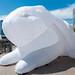 Intrude: White Rabbits in New York