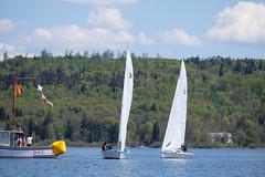 _DSF3253 (Frank Reger) Tags: regatta u20 dsc segeln segelboot diessen