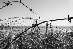 Juin 1944 - Utah Beach (Remy Carteret) Tags: blackandwhite bw france beach canon eos us blackwhite noiretblanc wwii nb worldwarii overlord ww2 mk2 5d canon5d normandie utha neptune normandy liberation dday worldwar2 mkii markii mark2 jourj libration allis 661944 6644 dbarquement secteuramricain secondeguerremondiale 2eguerremondiale june44 batailledenormandie canoneos5dmarkii batailledefrance uthabeach 5dmarkii canon5dmark2 juin44 oprationneptune 5dmark2 canon5dmarkii canoneos5dmark2 remycarteret rmycarteret neptuneopration