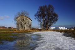 _DSC9628_01 (OSMIUM76) Tags: wood cloud brown white house mountain snow tree ice water norway grey mirror casa ruin reflect albero lofoten norvegia specchio legno rudere ghiaccio westerlen
