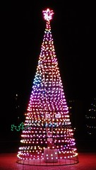 (Will S.) Tags: mypics forresterpark fosterchristmasdisplay belleville ontario canada christmas display lights themes janeforresterpark xmas noel weihnacht