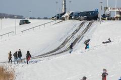 20160116-3258 (Sander Smit / Smit Fotografie) Tags: winter sneeuw delfzijl sneeuwpret slee winterweer