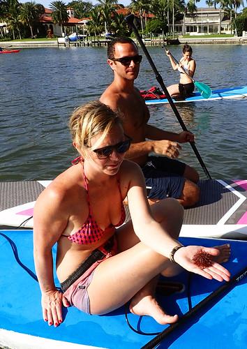 1_1_16  paddleboard tour Lido Key Sarasota FL 18