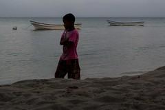 Caminante (Raíces anónimas) Tags: costa arbol atardecer mar colombia pescador caribe pescar pelícano islafuerte arbolquecamina